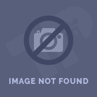 Summer school in Prague